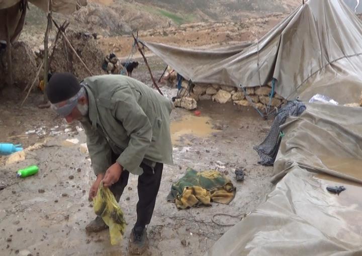 """پژمانفر نسبت به وضعیت """"بغرنج"""" عشایر هشدار داد؛ مهاجرت عشایر به حاشیهشهرها در صورت عدم حمایت"""