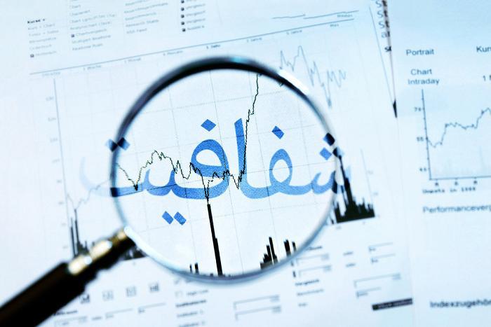 نماینده مردم مشهد و کلات: باید اموال و داراییهای نمایندگان شفاف شود
